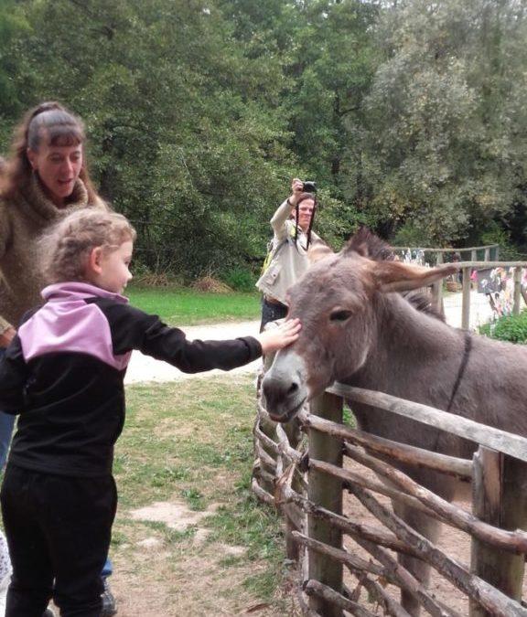 Journée d'intégration au jardin de Brocéliande!